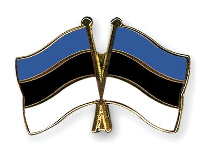 эстонский флаг