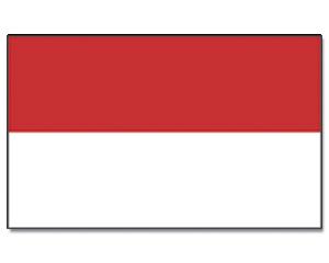 Afbeeldingsresultaat voor flag monaco