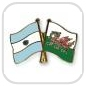 crossed-flag-pins-special-offer-Argentina-Wales