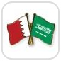 crossed-flag-pins-special-offer-Bahrain-Saudi-Arabia