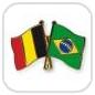 crossed-flag-pins-special-offer-Belgium-Brazil