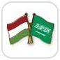 crossed-flag-pins-special-offer-Hungary-Saudi-Arabia