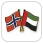 crossed-flag-pins-special-offer-Norway-United-Arab-Emirates