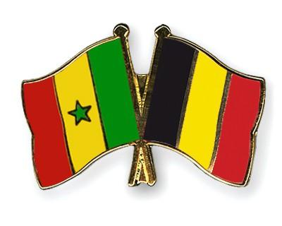 Crossed Flag Pins Senegal-Belgium