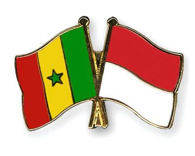 Crossed Flag Pins Senegal-Indonesia