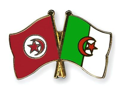 Crossed Flag Pins Tunisia-Algeria
