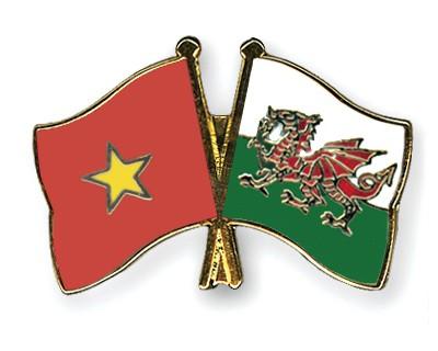 Crossed Flag Pins Vietnam-Wales