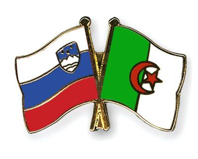 Crossed Flag Pins Slovenia-Algeria