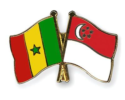 Crossed Flag Pins Senegal-Singapore