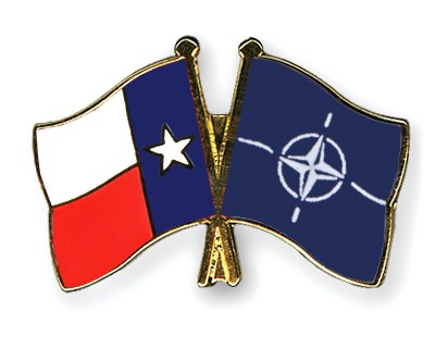Crossed Flag Pins Texas-NATO
