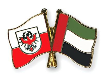 Crossed Flag Pins Tyrol-United-Arab-Emirates