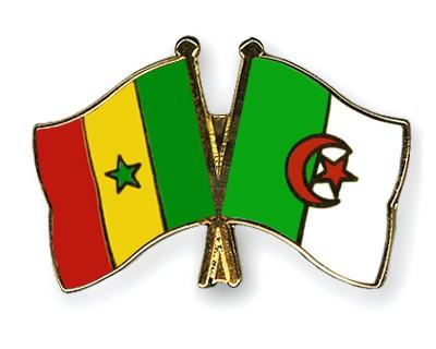 Crossed Flag Pins Senegal-Algeria