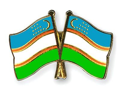 Crossed Flag Pins Uzbekistan-Uzbekistan