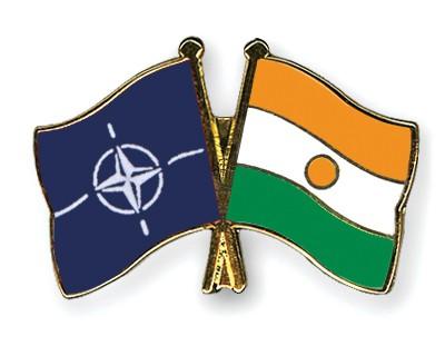 Crossed Flag Pins NATO-Niger