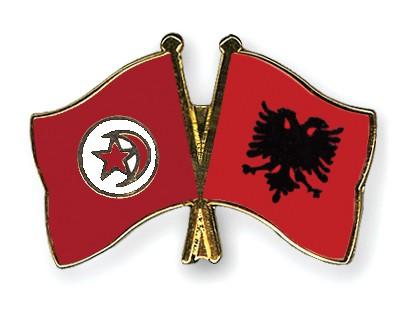 Crossed Flag Pins Tunisia-Albania