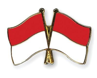 Crossed Flag Pins Indonesia-Indonesia