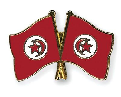 Crossed Flag Pins Tunisia-Tunisia