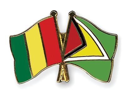 Crossed Flag Pins Guinea-Guyana