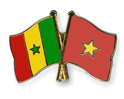 Crossed Flag Pins Senegal-Vietnam