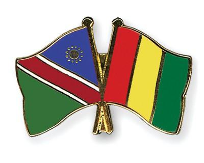 Crossed Flag Pins Namibia-Guinea