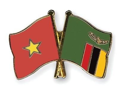 Crossed Flag Pins Vietnam-Zambia