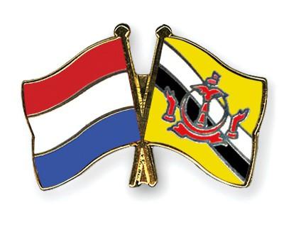 Special Offer Crossed Flag Pins Netherlands-Brunei-Darussalam