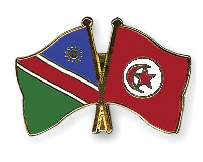 Crossed Flag Pins Namibia-Tunisia