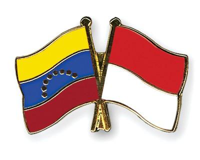 Crossed Flag Pins Venezuela-Indonesia