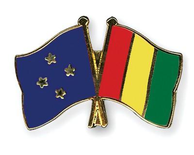 Crossed Flag Pins Micronesia-Guinea