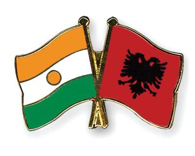 Crossed Flag Pins Niger-Albania