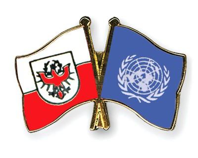 Crossed Flag Pins Tyrol-UNO