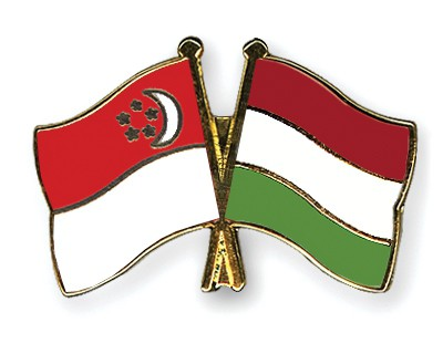 Special Offer Crossed Flag Pins Singapore-Hungary