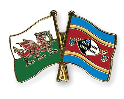 Special Offer Crossed Flag Pins Wales-Swaziland