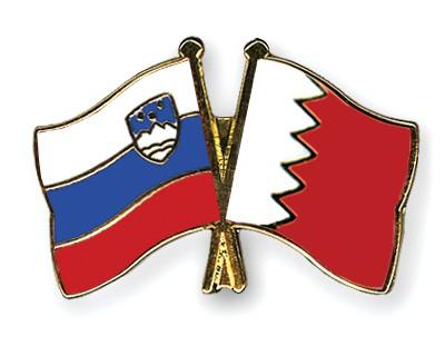Crossed Flag Pins Slovenia-Bahrain