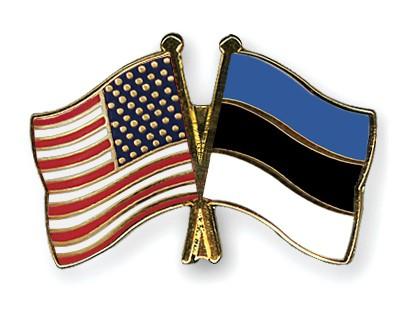 Crossed Flag Pins USA-Estonia