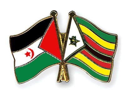 Crossed Flag Pins Western-Sahara-Zimbabwe