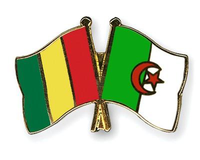 Crossed Flag Pins Guinea-Algeria