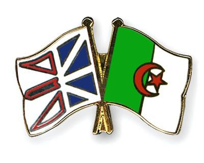 Crossed Flag Pins Newfoundland-and-Labrador-Algeria
