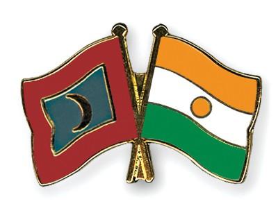 Crossed Flag Pins Maldives-Niger