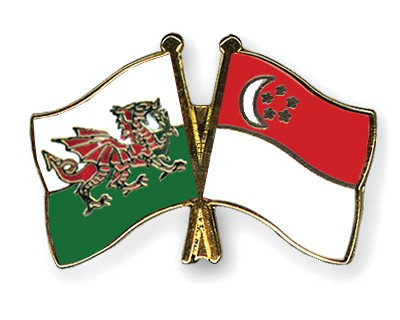 Special Offer Crossed Flag Pins Wales-Singapore