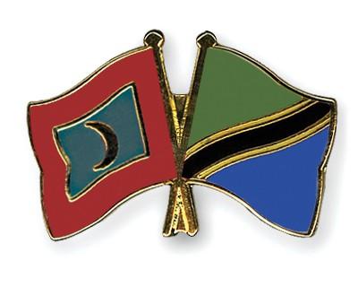 Crossed Flag Pins Maldives-Tanzania