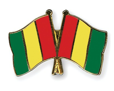 Crossed Flag Pins Guinea-Guinea