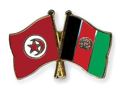 Crossed Flag Pins Tunisia-Afghanistan