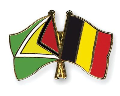 Crossed Flag Pins Guyana-Belgium