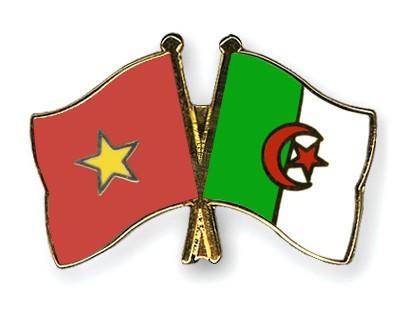 Crossed Flag Pins Vietnam-Algeria