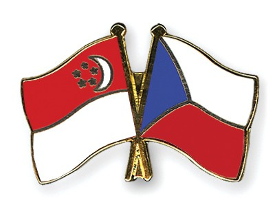 Special Offer Crossed Flag Pins Singapore-Czech-Republic