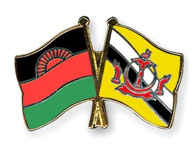 Crossed Flag Pins Malawi-Brunei-Darussalam