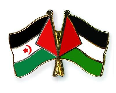 Crossed Flag Pins Western-Sahara-Palestine