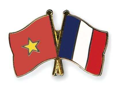 Crossed Flag Pins Vietnam-France