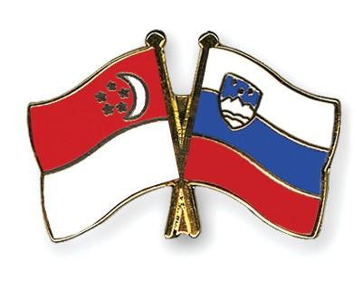Crossed Flag Pins Singapore-Slovenia
